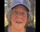Nancy Fierer